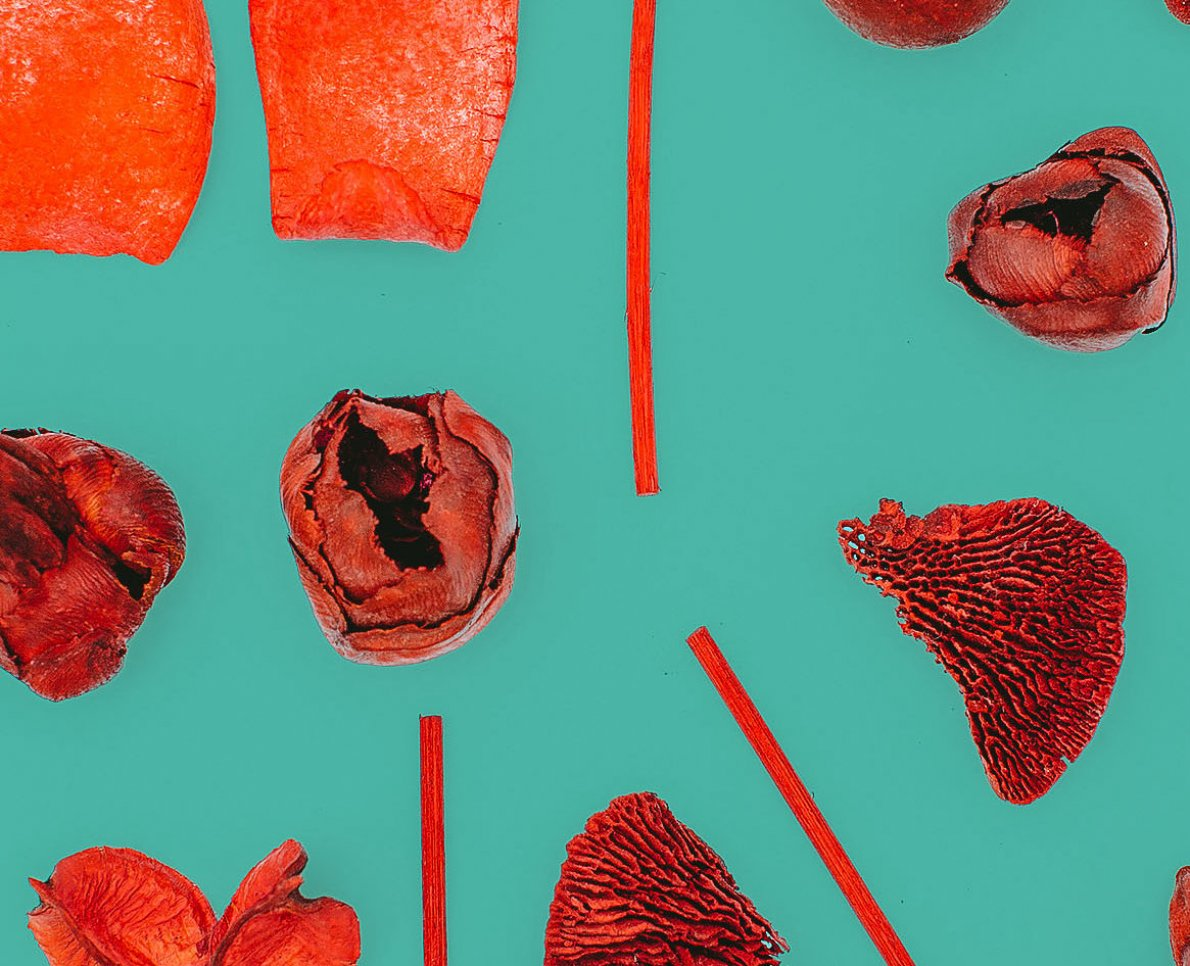 konstverk utav produkter hittade i naturen på designgymnasiet